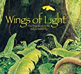 img - for Wings of Light: The Migration of the Yellow Butterfly book / textbook / text book