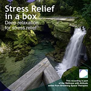 Stress Relief in a Box Audiobook