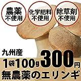 九州産 無農薬・無化学肥料 エリンギ ひめたけ 1袋約100g