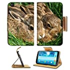 Rabbits Couple Grass Funk Hiding Samsung Galaxy Tab 3 8.0 Flip Case Stand Magnetic Cover Open Ports Customized Made to Order Support Ready Premium Deluxe Pu Leather 8 7/16 Inch (215mm) X 5 6/8 Inch (145mm) X 11/16 Inch (17mm) Liil Galaxy Tab3 Cases Tab_8.0 three Accessories Graphic Background Covers Designed Model Folio Sleeve HD Template Designed Wallpaper Photo Jacket Wifi 16gb 32gb 64gb Luxury Protector