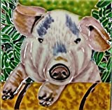 Continental Art Center SD-081 4 by 4-Inch Pig Ceramic Art Tile
