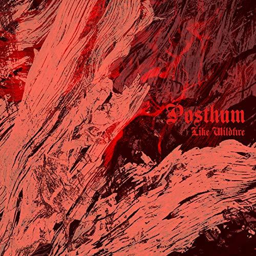 Vinilo : POSTHUM - Like Wildfire