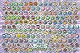 ポケットモンスター ベストウイッシュ 500ラージピース イッシュ図鑑 500-L121