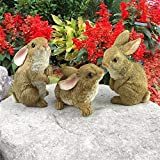 Design Toscano The Bunny Den Rabbits Garden Animal Statues, 5 Inch, Set of Three, Polyresin, Full Color (Color: Multicolored, Tamaño: 5 Inch)