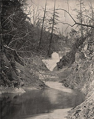 The Natural Bridge and Lace Falls, 1895
