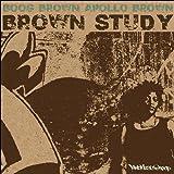 echange, troc Boog Brown & Apollo Brown - Brown Study