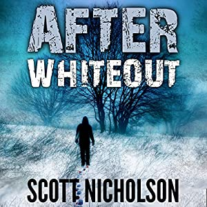 After: Whiteout Audiobook