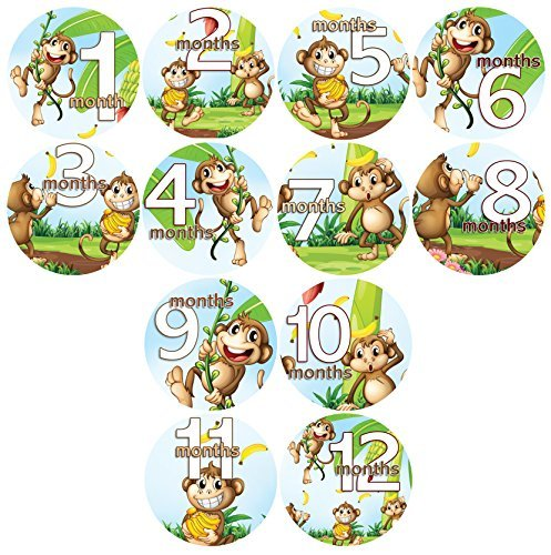 Baby Monthly Belly Stickers SILLY MONKEYS WITH BANANAS, Stickers Baby Shower Gift Photo Shower Stickers Baby Photo Onesie Milestone Stickers - 1