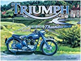 Original Metal Sign Co. Trevor Mitchell Triumph Thunderbird Metal Wall Sign