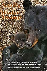 """Secrets of a Winter Swamp"" Black Bear Video DVD"