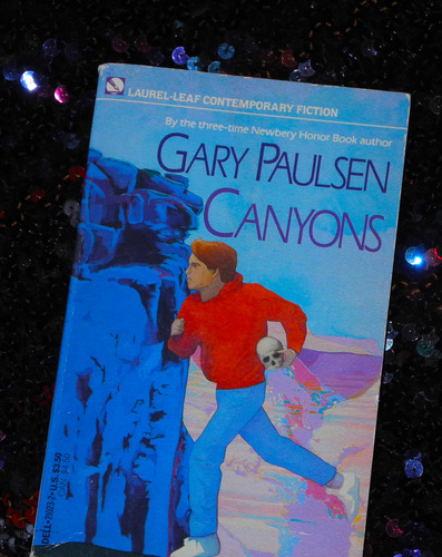 a review of gary paulsens book canyons Complete summary of gary paulsen's the crossing enotes plot summaries  the crossing summary gary paulsen  enotescom will help you with any book or any.