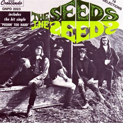 The Seeds: Evil Hoodoo