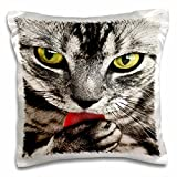 Florene - Cat Art - Print of Tabby Lick Paw Closeup Painting - 16x16 inch Pillow Case (pc_203897_1)