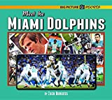 Meet the Miami Dolphins (Big Picture Sports)
