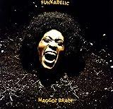 echange, troc Funkadelic - Maggot Brain