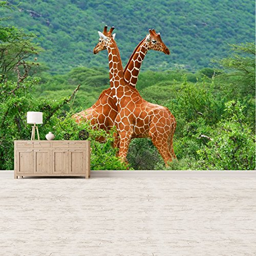 Pair of Giraffes African Safari Animal Wall Mural Nature Photo Wallpaper available in 8 Sizes Gigantic Digital (African Safari Pictures compare prices)