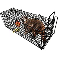 Amagabeli Professional Humane Live Animal Trap
