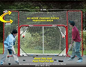 Hockey Goal & Backstop - EZ Goal