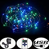 Accmor Christmas RGB Led String Lights for Indoor Outdoor - USB Bedroom Copper Decorations for Wedding and Party - with USB Cable - Remote Controller - Power Adapter - 33ft 100 Waterproof Starry LEDs