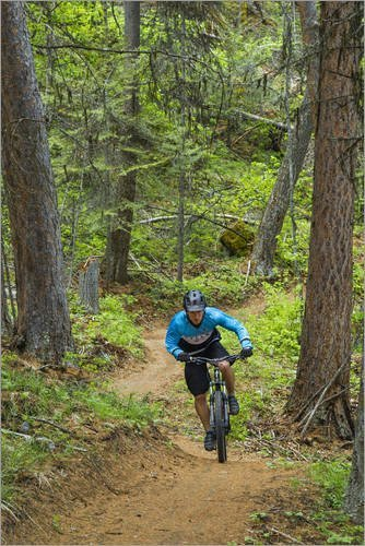 poster-60-x-90-cm-mountain-bicycle-at-whitefish-trail-by-chuck-haney-danita-delimont-high-quality-ar