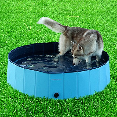 Namsan Foldable Dog Pool Bathing Tub for small dogs, Sky blue (Pet Tubs For Small Dogs compare prices)