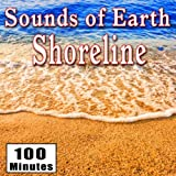 Gently Lapping Ocean or Lake Waves on a Sandy Shoreline (Water Ambience Sound Effects)