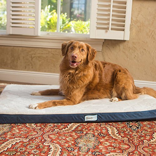 Simmons-Beautyrest-Thera-Bed-Orthopedic-Memory-Foam-Dog-Bed-and-Kennel-Crate-Mat