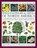 The Illustrated Encyclopedia of Wild Flowers & Trees of North America: An expert reference and identification guide to over 2000 wild flowers and ... beautiful watercolours, maps and photographs