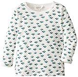 Kanz Baby Boys 0-24m Crew Neck Long - regular T-Shirt -  Multicoloured - Mehrfarbig (0003) - 0-3 Months