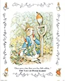 "Beatrix Potter (The Tale Of Peter Rabbit, Garden) Art Poster Print - 16"" X 20"""
