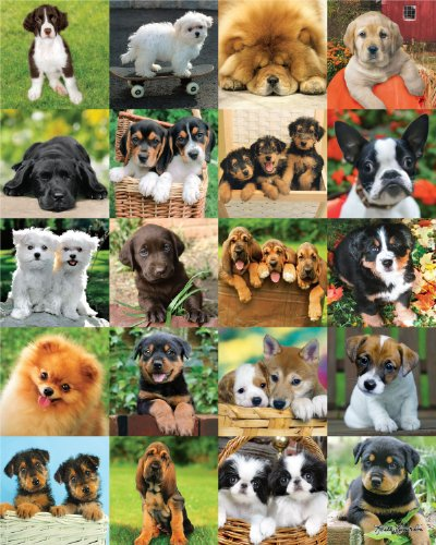 Andrews + Blaine Ltd Furry Friends - 500 Pc Puzzle - 1