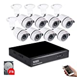 Tonton 8CH Full HD 1080P Expandable Security Camera System, 5-in-1 Surveillance DVR with 2TB Hard Drive and (8) 2.0MP Waterproof Outdoor Indoor Bullet Camera, Free APP Remote Viewing and Email Alert (Tamaño: Wired 1080P 8CH DVR+8CAM+2TB)