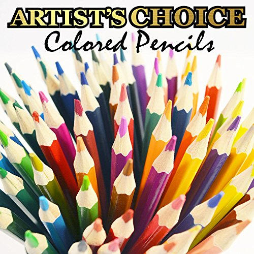 Artist's Choice 120-Pack Colored Pencils - Barnes and ...