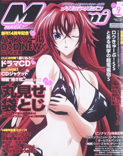 Megami MAGAZINE (メガミマガジン) 2013年 09月号 [雑誌]