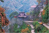 1000ピース 秋の立石寺