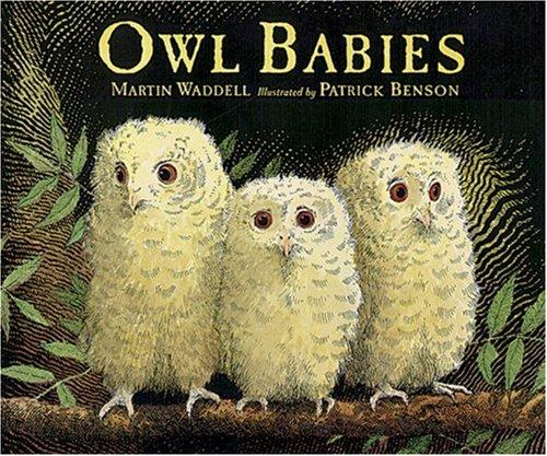 Owl Babies Big Book front-793476