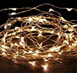 MuchBuy 33Ft Warm White Copper Wire LED Starry Lights, 5V DC LED String Light, Includes Power Adapter, with 100 Individual Leds