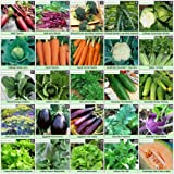 Heirloom Seeds Non-GMO Vegetable Seed Kit - 50 Varieties - Best For Planting Sprouting and Gardening Non Hybrid Food For Emergency Doomsday Survival Preparedness - 100% Naturally Grown Open Pollinated