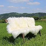 Tibet peau de mouton
