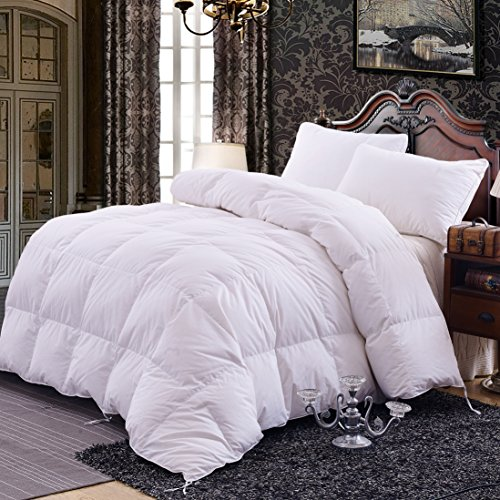 Great Deal! Topsleepy Luxurious All Size Bedding Goose Down Filling Comforter, White (Single Size)
