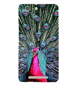 PrintVisa Peacock Design 3D Hard Polycarbonate Designer Back Case Cover for Gionee Marathon M5