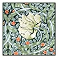 Counted Cross Stitch Chart Pimpernel by Arts and Crafts Movement Founder William Morris