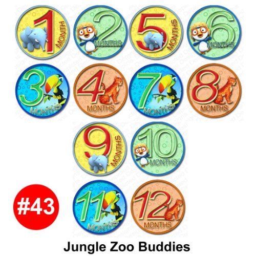 JUNGLE BUDDY Baby Month Onesie Stickers Baby Shower Gift Photo Shower Stickers, baby shower gift by OnesieStickers