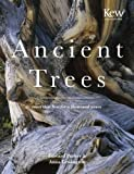 Ancient Trees: Trees That Live for a Thousand Years