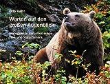 Image de Warten auf den großen Augenblick: Höhepunkte im Leben eines Tier- und Naturfilmers