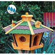 Mangeoire en bois massif (résistent aux intempéries avec silo/silo pour winterfütterung, mangeoire en bois avec toit rouge vert bR60r gGOS -