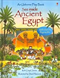 img - for See Inside Ancient Egypt (Usborne Flap Book) book / textbook / text book