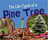 The Life Cycle of a Pine Tree (Plant Life Cycles)