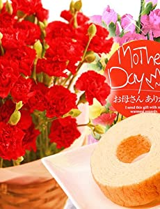 母の日ギフト 花鉢カーネーション 花とセット 花とスイーツセット 人気グルメギフト(赤色の生花)