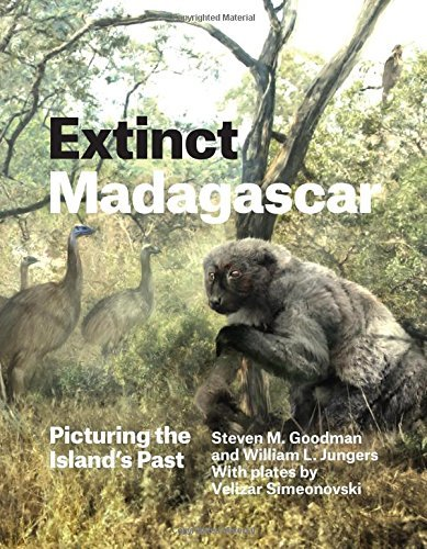 Extinct Madagascar: Picturing the Island's Past by Steven M. Goodman (2014-09-04)